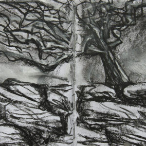 Sketchbook Drawing - Charcoal