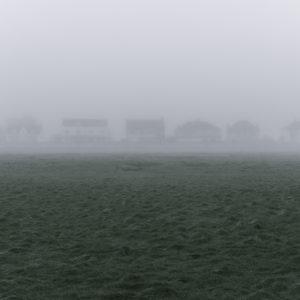Fifteen Shades of Grey - Photograph