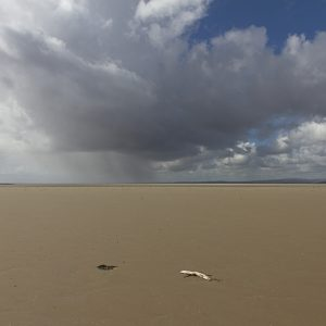 Driftwood and Storm - Photograph