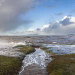 Storm - Photograph