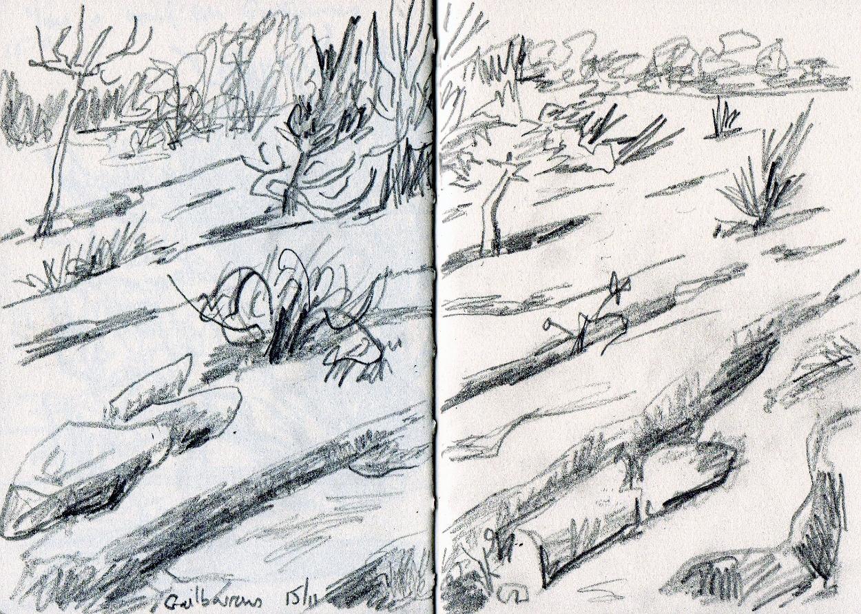 Sketchbook drawing - Graphite